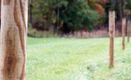 Выбор заборных столбов